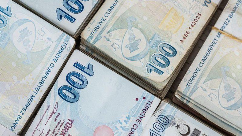 E Devletten Bankada Unutulan Paranın Öğrenilmesi